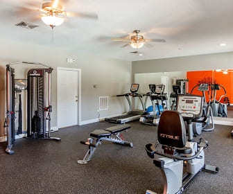 workout area with carpet, a ceiling fan, and TV, Avalon Of Hermitage