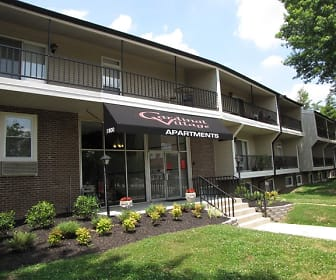 Old Louisville 1 Bedroom Apartments For Rent Louisville Ky 55 Rentals,Colors That Go Well With Red Brick