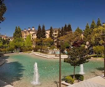 Elan At River Oaks, North San Jose, San Jose, CA