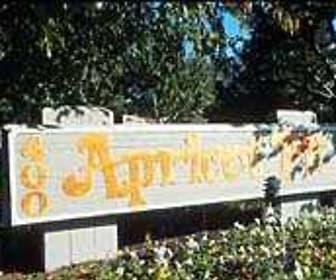 Community Signage, Apricot Pit
