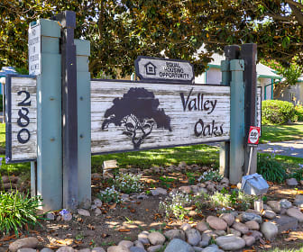 Valley Oaks, Ione, CA