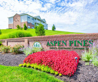Aspen Pines, Gateway Community and Technical College  Covington, KY
