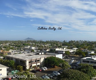 14 Aulike Street #805 - 244, Kailua, HI