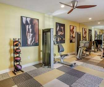 Fitness Weight Room, Dwell Apartment Homes