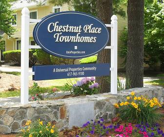 Community Signage, Chestnut Place