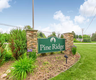 Pine Ridge, 48451, MI