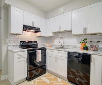 Vida Apartments by ARIUM, Norcross, GA
