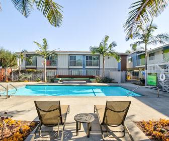 Pool, The Circle Apartments