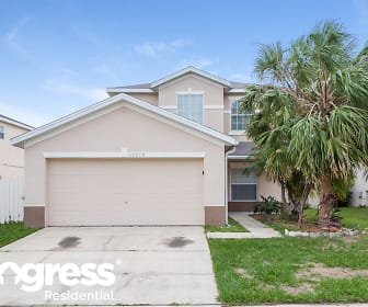 13212 Canna Lily Dr, Meadow Woods, FL