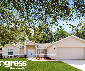 154 Winston Manor Cir, Seffner, FL