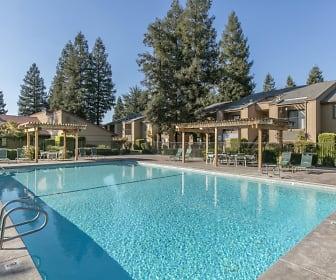 Pool, Pine Tree Village