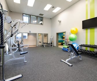 Fitness Weight Room, Vibe Apartments