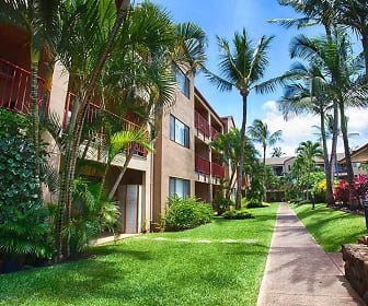 Sunset Terrace Apartments, 96761, HI