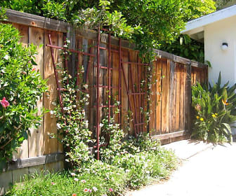 backgate.jpg, 3512 Princeton Ave