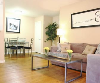 Living Room, Hidden Palms