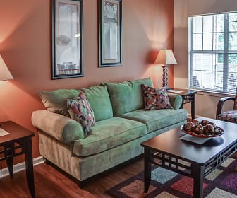 Living Room, Reserve at Mill Landing