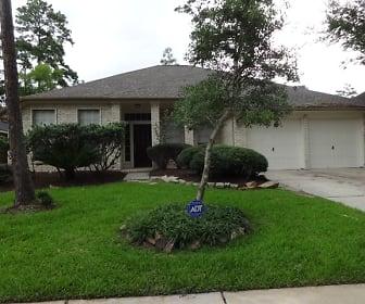 14422 Wynfield Drive, Longwood Village, Houston, TX
