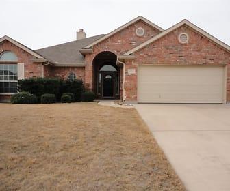 806 Chestnut Grove Drive, Cleburne, TX