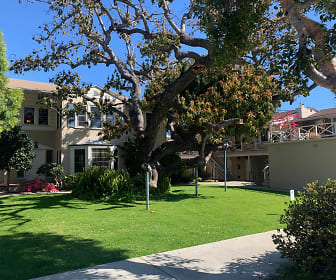 3232 Broadway, Brentwood, Los Angeles, CA