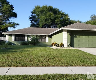 1412 Windjammer Loop, Lutz, FL