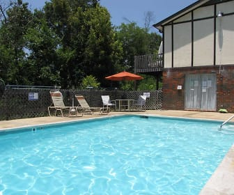 Relaxing Private Pool, The View Apartment Homes