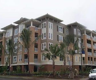 520 Lunalilo Home Rd Unit 6206, Henry J Kaiser High School, Honolulu, HI