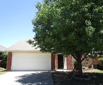 11812 Ponderosa Pine Drive, Villages of Woodland Springs, Fort Worth, TX