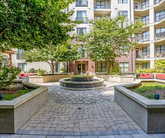 Courtyard, Pine Street Flats
