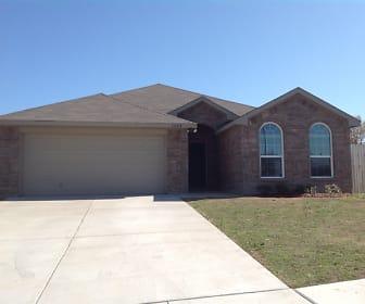 1325 Rosedale Springs Lane, Willow Creek, Fort Worth, TX