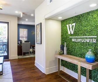 Wildflower, University Heights Historic District, Gainesville, FL