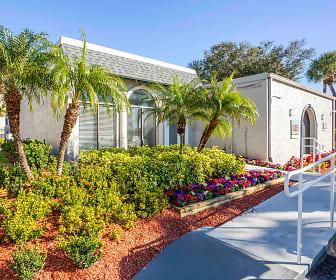 Hanley Place, 33634, FL