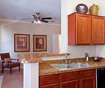 Somerset at Spring Creek Apartments, Plano, TX