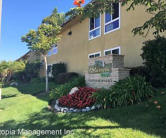 6401 Mount Ada Road Unit 149, Clairemont Mesa East, San Diego, CA