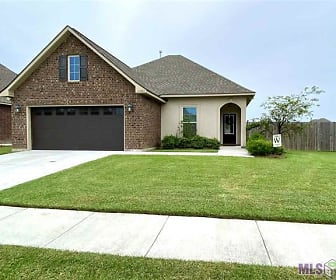 18358 SUNSET PARK, Ascension, LA