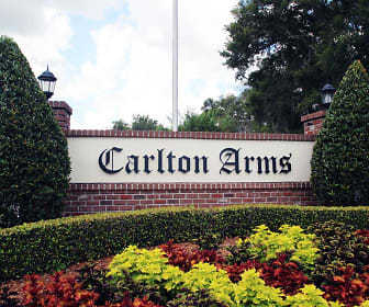 Carlton Arms Of North Lakeland, Zephyrhills, FL
