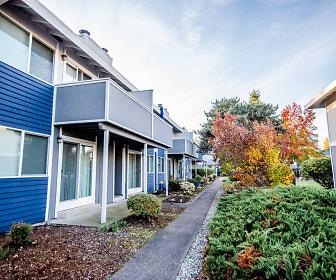 Fife Apartments - Revive Apartments - Rear Exteriors, Revive