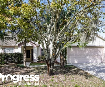 10313 Deepbrook Dr, Monets Pond Montessori, Riverview, FL