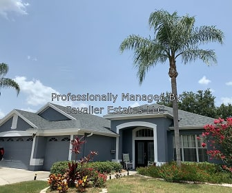 401 Knight Drive, Tarpon Springs, FL