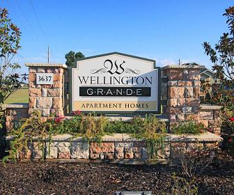 Wellington Grande