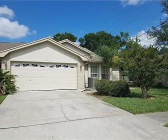 2998 Brookfield Ln,Clearwater, FL 33761, Palm Harbor, FL