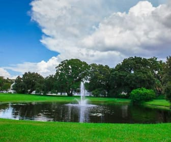 The Park at Lake Magdalene, Lake Magdalene, FL