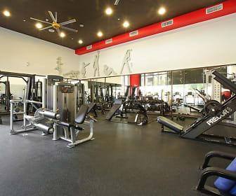 Fitness Weight Room, AMLI Warner Center