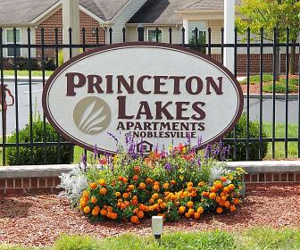 Community Signage, Princeton Lakes
