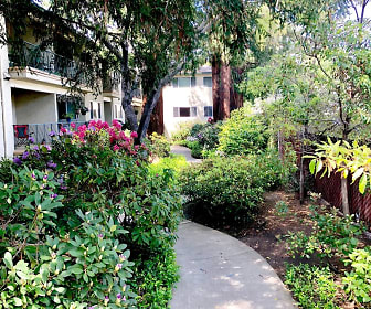Noel Oaks Apartments, Palo Alto, CA
