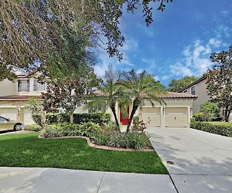 20330 Chestnut Grove Drive, Grand Hampton, Tampa, FL