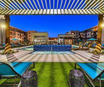 Paradise at P83, Midwestern University AZ, AZ