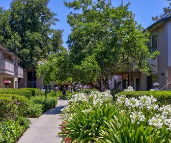 Appletree Apartments, San Tomas, Campbell, CA