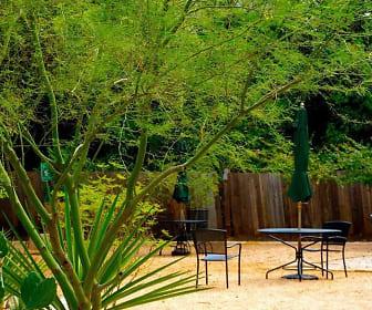 Bouldin Creek, South Lawn, Austin, TX