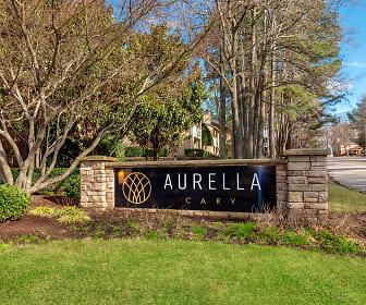 Community Signage, Aurella Cary
