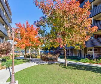 Vista Torre, Greenwood, Arden-Arcade, CA